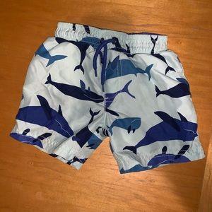 Boys swim trunks - 2T